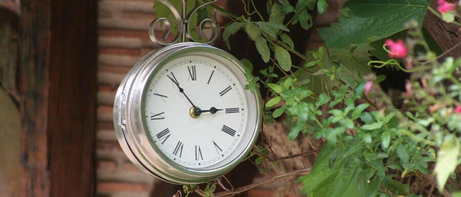 Retro-Uhr im Freien, von Pflanzen umwachsen